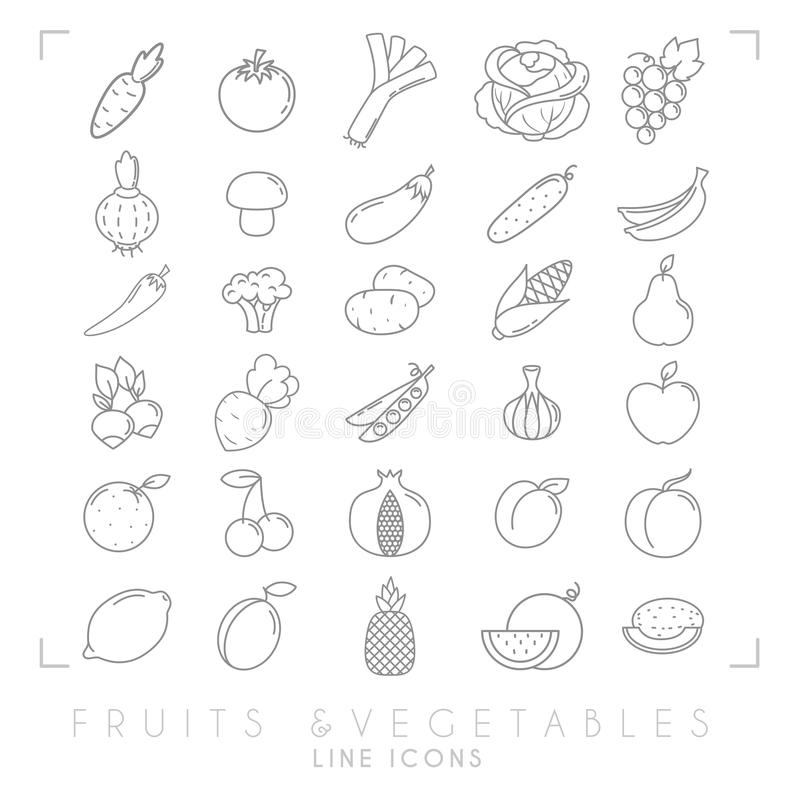 Trendy simple thin line fruits and vegetables icons big set. Healthy eco, tropic vector illustrations royalty free illustration