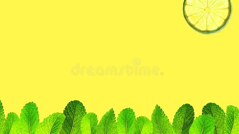 Trendy summer background with grass and sun made of green mint leaves and lime in mint color on bright yellow background. stock photography