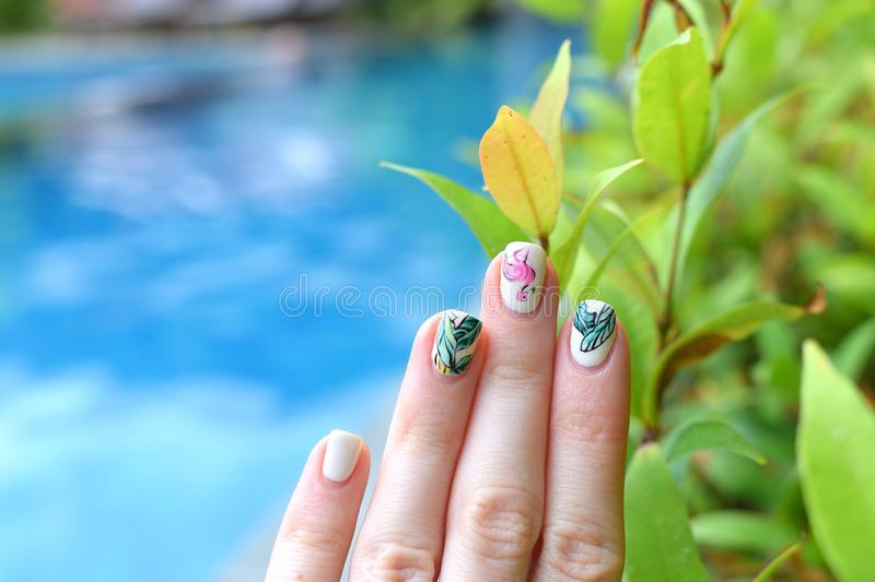 Trendy summer manicure flamingoes palm leaves swimming pool stock image