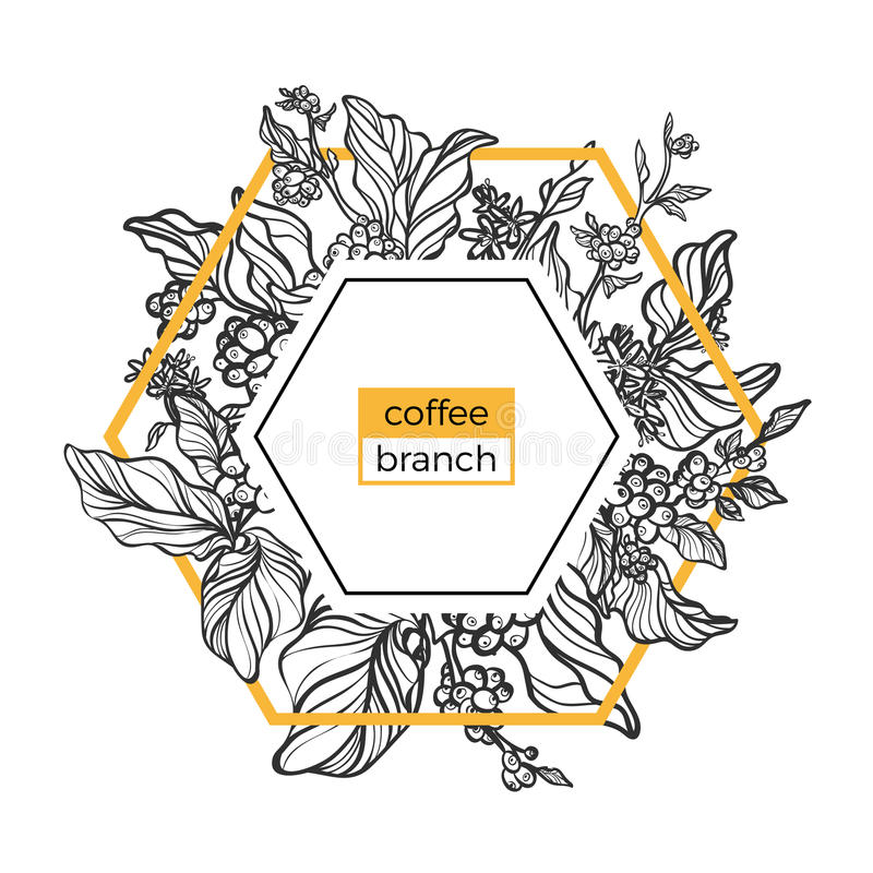 Trendy template. Coffee branches with leaves, flowers and natural coffee beans. Vector royalty free illustration