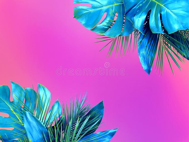 Trendy turquoise colored close up of various tropical leaves on bright pink and violet background royalty free stock photography