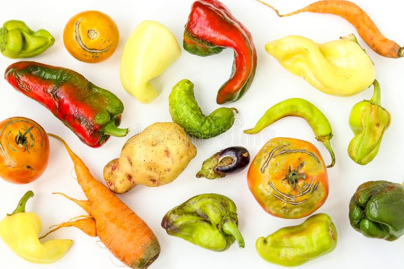 Trendy Ugly Organic Vegetables: potatoes, carrots, cucumber, peppers, chili, eggplant and tomatoes on white background royalty free stock images