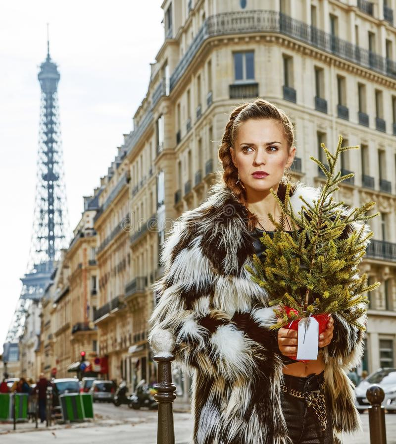 Trendy woman with Christmas tree in Paris, France looking aside. Boiling hot trendy winter in Paris. Portrait of trendy woman with Christmas tree in Paris stock image