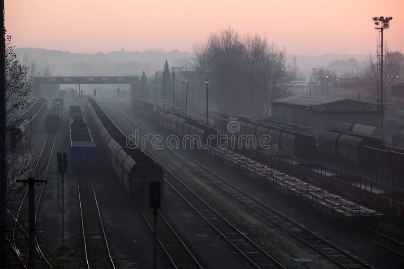 Treni che si levano in piedi alla stazione fotografia stock libera da diritti