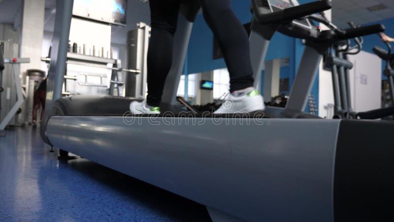 Treni della ragazza su una pedana mobile Camminando in ginnastica donna del club di forma fisica impegnata nella camminata Mette  fotografie stock libere da diritti