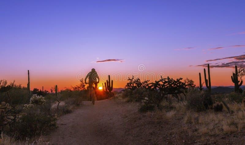Treno Del Deserto Di Mountain Biker A Scottsdale, AZ Vicino Al Tramonto fotografia stock libera da diritti