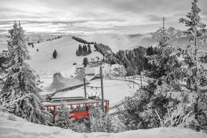 Treno della ruota dentata in pieno dei turisti che scalano per completare del picco in Cantone di Svitto, Svizzera di Rigi del su immagini stock libere da diritti