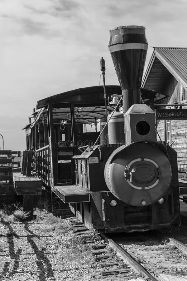 Treno estraente fotografia stock libera da diritti
