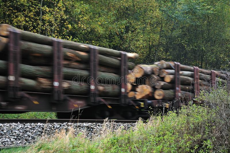 Treno merci con i tronchi di albero che passano foresta fotografia stock libera da diritti