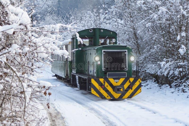 Treno nell'inverno - ferrovia della foresta immagine stock