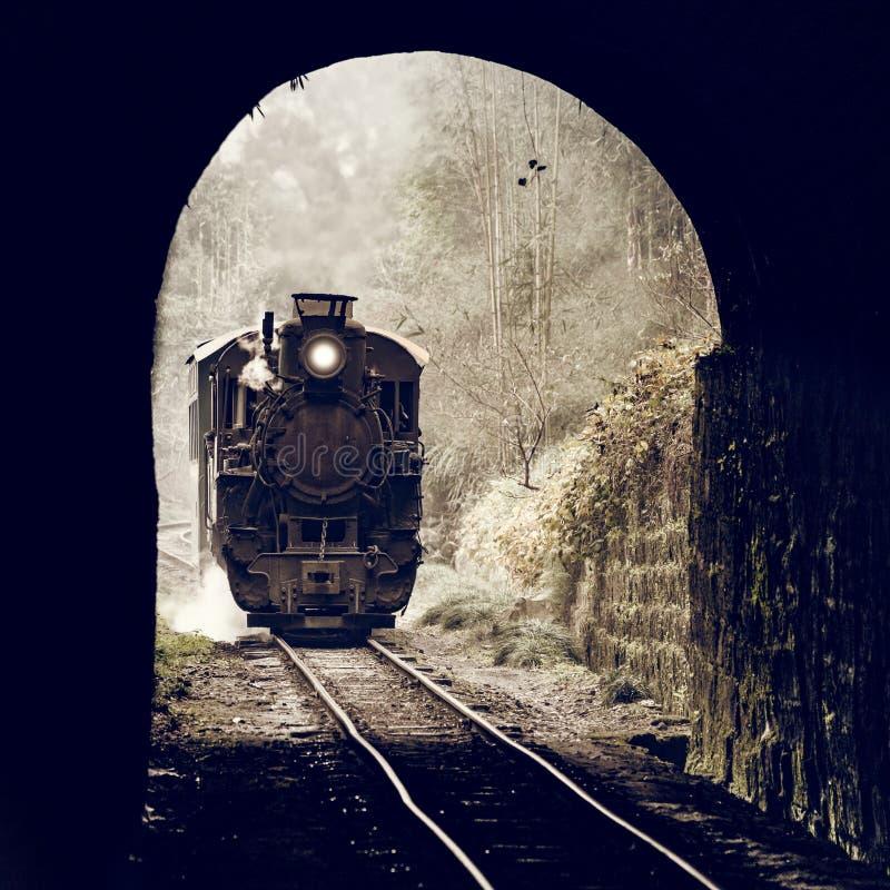 Treno a scartamento ridotto del vapore fotografia stock libera da diritti