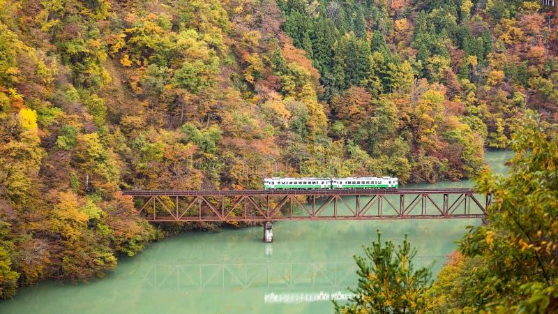 Treno sul ponte in autunno fotografia stock