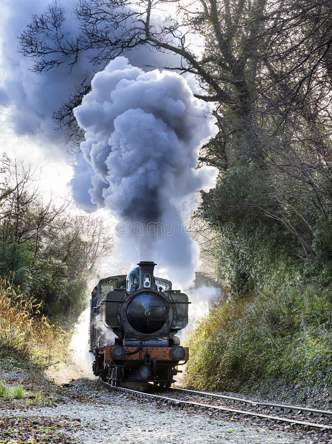 Treno a vapore fotografia stock