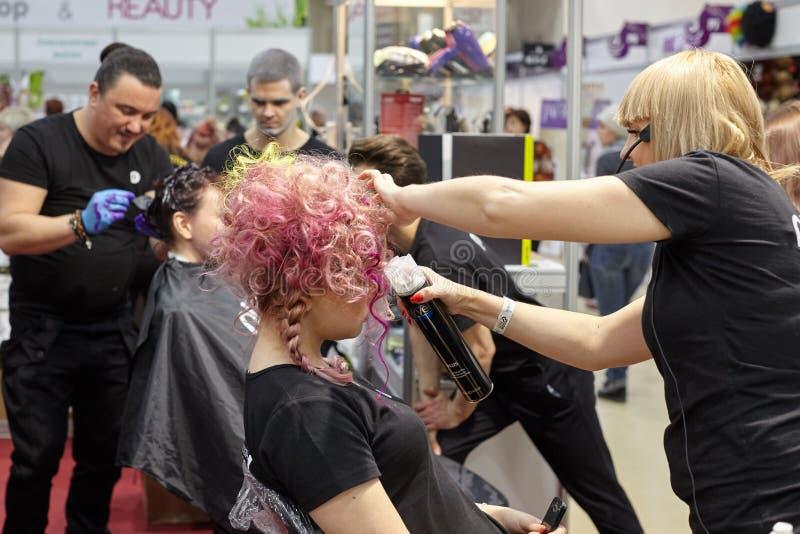 Trenować fryzjery dla tworzyć kolorowego kreatywnie hairstyl fotografia royalty free