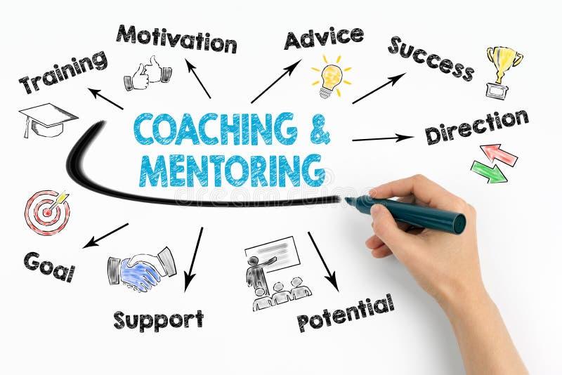 Trenowania i obowiązki mentora pojęcie Sporządza mapę z słowami kluczowymi i ikonami na białym tle obrazy royalty free