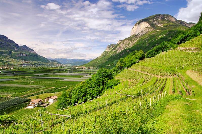 Trentino στοκ φωτογραφία
