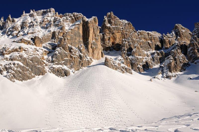 trentino för alpsdolomitesitaly skidåkning royaltyfri foto