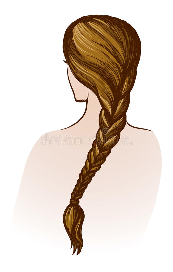Trenza larga Gráfico del vector libre illustration