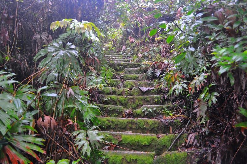 Treppe bis zu Sibayak-Vulkan stockbilder