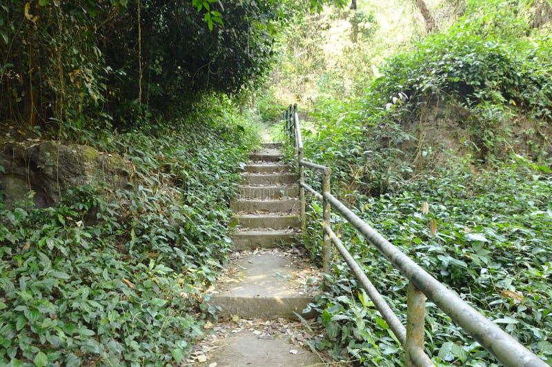 Treppe bis zum Wong-Bonwasserfall Reisestandort in Thailand stockfoto