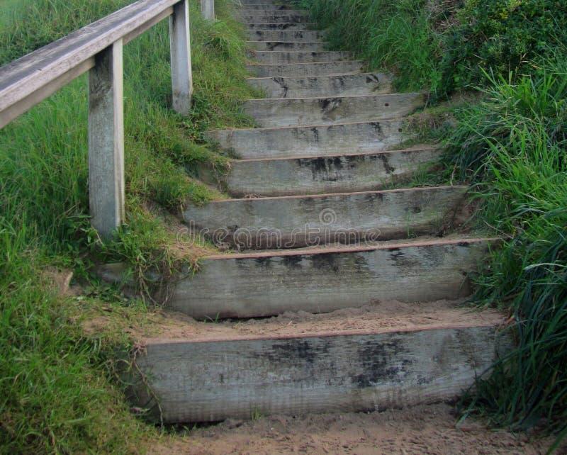 Treppe der Natur lizenzfreies stockfoto