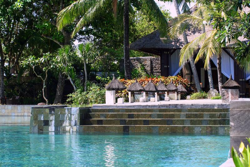 Treppe des Swimmingpools und der Palmen auf Hintergrund lizenzfreie stockbilder