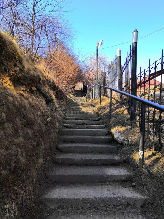 Treppe im Park, der zu die Spitze führt An den sonnigen Tagen lizenzfreie stockfotografie