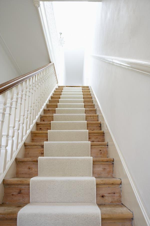 Treppe mit weißem Teppich lizenzfreie stockbilder