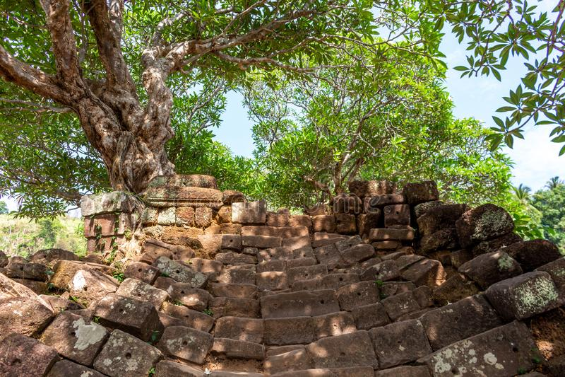 Treppe zu Bottich Phou-Tempel lizenzfreies stockbild