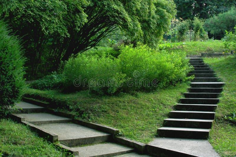 Treppen im Park stockbilder