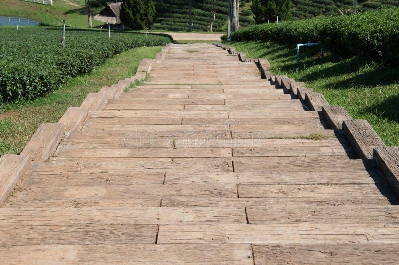 Treppendesign im Teegarten lizenzfreie stockfotografie