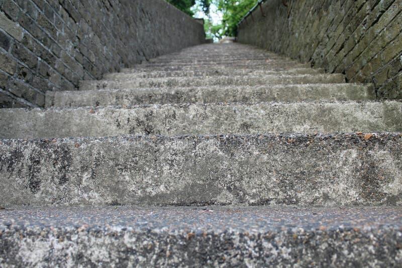 Treppenhaus zur Mutter Natur stockfotos