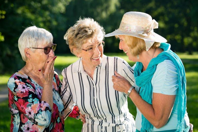 Tres amigos femeninos mayores que cotillean al aire libre fotografía de archivo libre de regalías