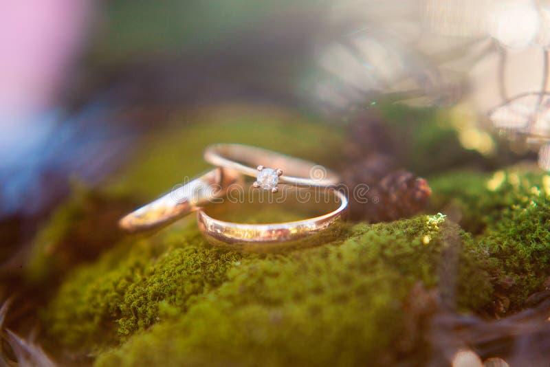 Tres anillos de bodas de oro en el fondo del musgo fotos de archivo
