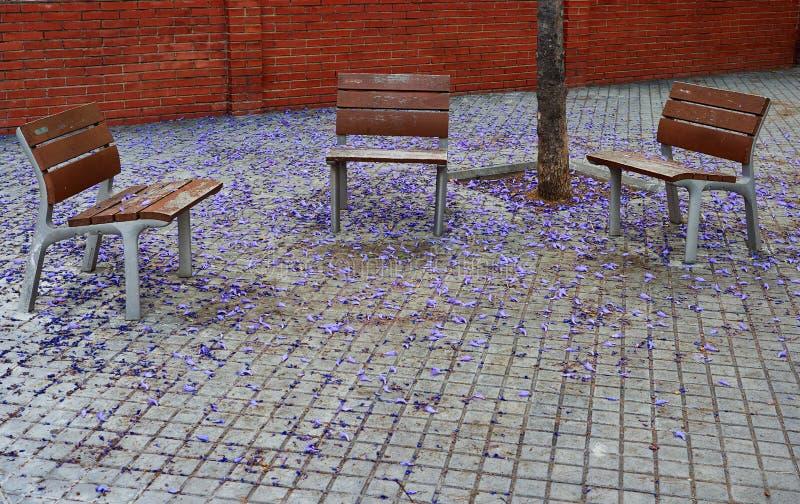 Tres bancos vacíos en las calles de Barcelona imagenes de archivo