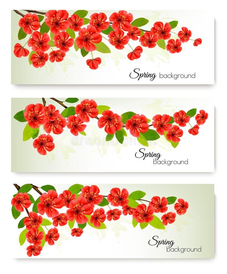 Tres banderas de la primavera de la naturaleza con el flor de Sakura stock de ilustración