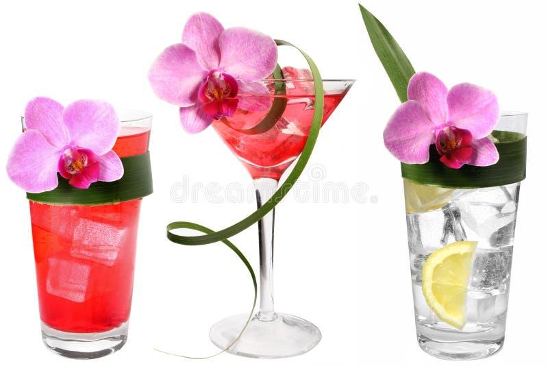Tres bebidas tropicales fotografía de archivo