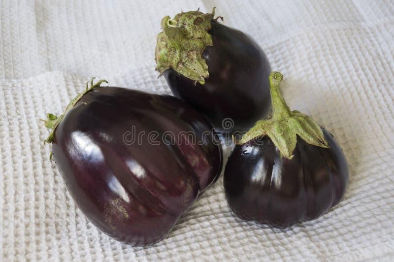Tres berenjenas de la violación están poniendo en el fondo blanco Autumn Vegetables Comida deliciosa y sana fotografía de archivo