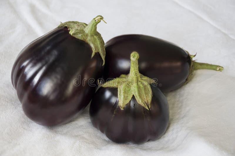 Tres berenjenas de la violación están poniendo en el fondo blanco Autumn Vegetables Comida deliciosa y sana imagen de archivo
