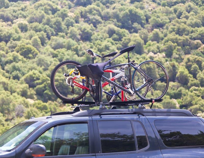 Tres bicicletas en la tapa del coche cerca del bosque fotos de archivo libres de regalías