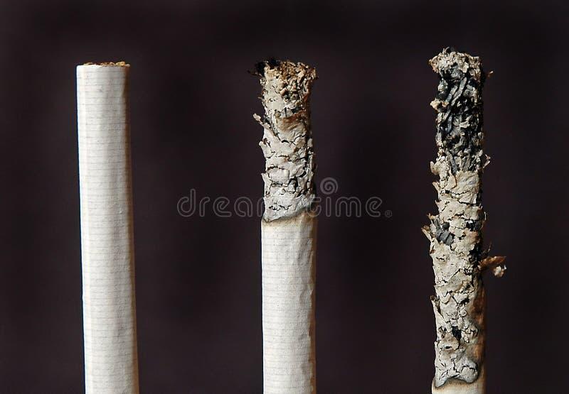 Tres Cigarrillos Imagen de archivo libre de regalías