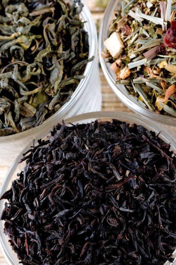 Tres clases de té imágenes de archivo libres de regalías
