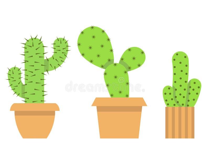Tres diversos tipos de cactus que crecen en macetas ilustración del vector