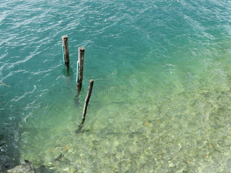 Tres en agua foto de archivo libre de regalías