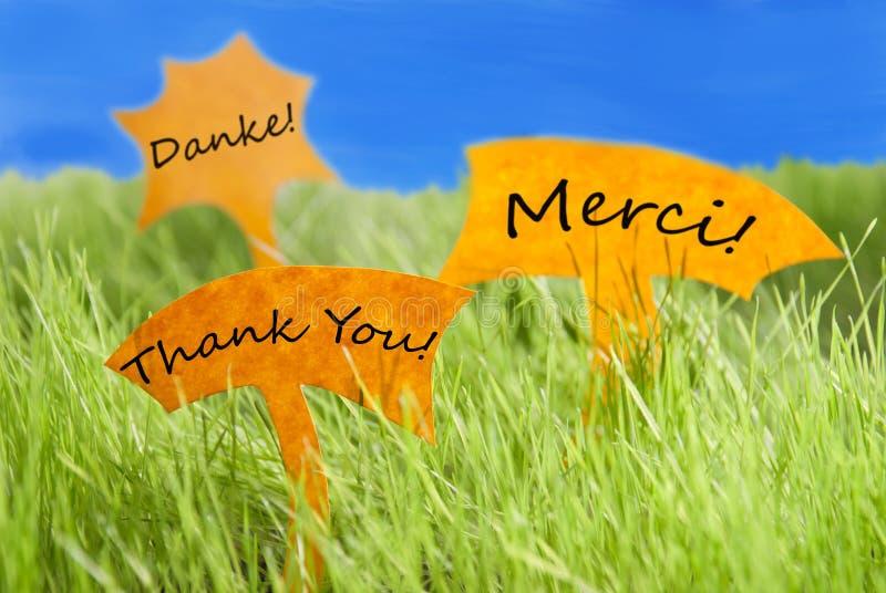Tres etiquetas con le agradecen en otros idiomas y cielo azul imagen de archivo libre de regalías
