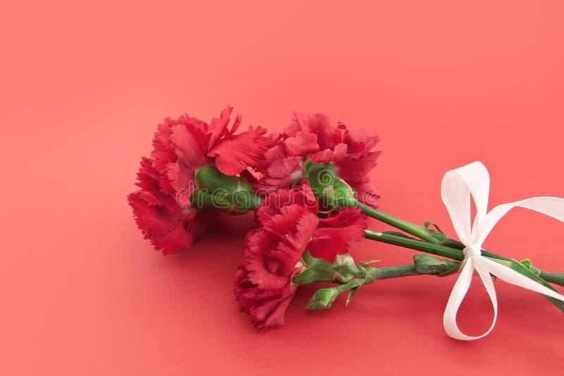 Tres flor, claveles rojos con la cinta blanca en fondo rojo foto de archivo libre de regalías