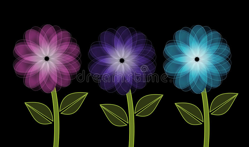 Tres flores brillantes en fondo negro libre illustration