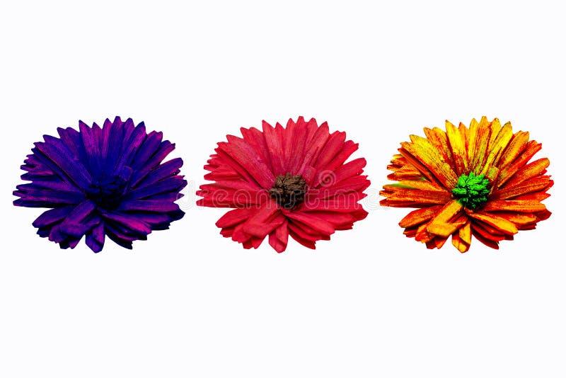 Tres flores de diversos colores en el fondo blanco para la decoración foto de archivo