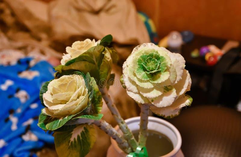 Tres flores de la brassica cerca para arriba imagenes de archivo
