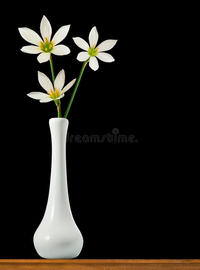 tres flores en primer del florero fotos de archivo